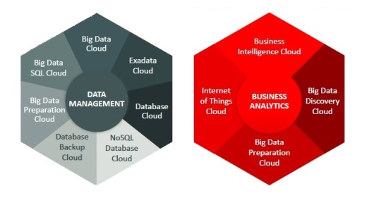 This analysis focuses on data-management and analytics developments tied to Oracle's June 2015 PaaS announcements.
